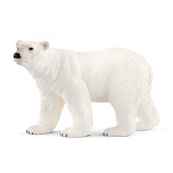 Gấu bắc cực