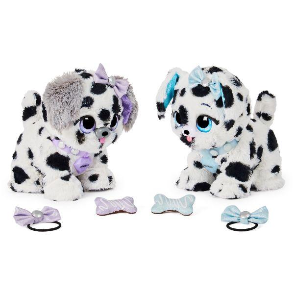 Hộp quà Present Pets chó đốm nhanh nhẹn