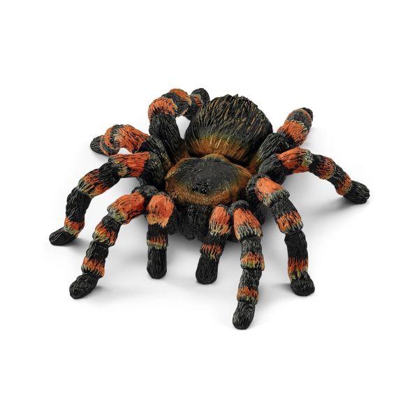 Nhện Tarantula