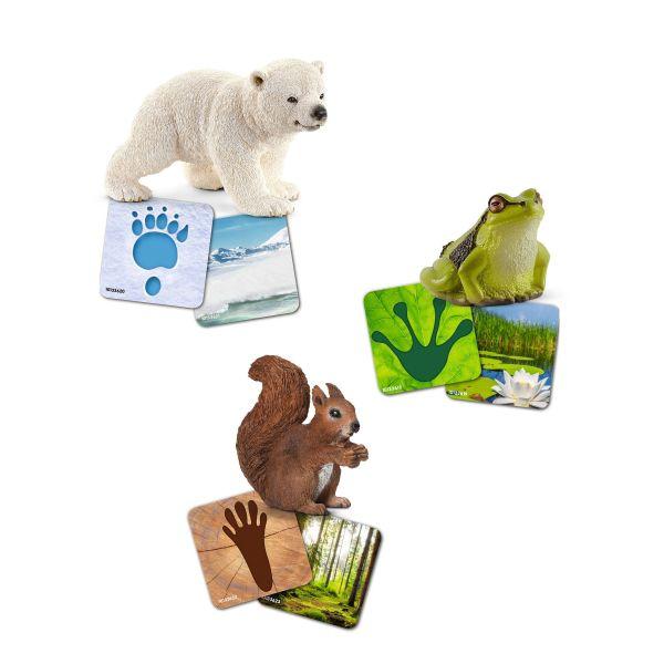 Flashcard hoang dã Schleich: gấu bắc cực con, sóc và ếch cây